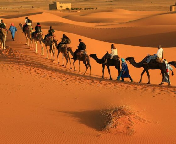 Morocco desert tours