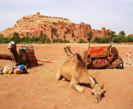 Kasbah Ait ben haddou in Ouarzazate